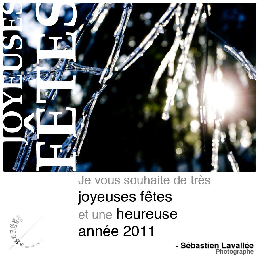 Joyeuses Fêtes 2010 (© Sébastien Lavallée, 2010)