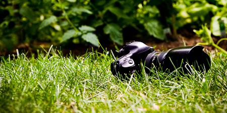 Acheter local, en photo ? Infocale.ca, Appareil photo, dans l'herbe, devant un jardin. (© Infocale, 2010)