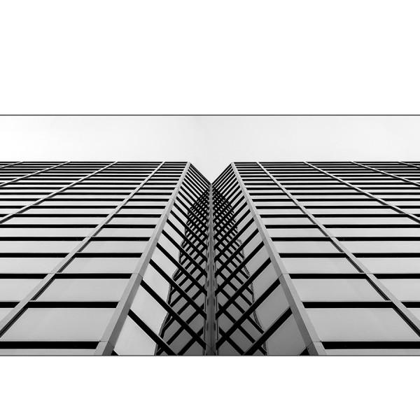 Corporate Ladders. Sébastien Lavallée Photographe (Gatineau, Ottawa, Montréal, Outaouais)