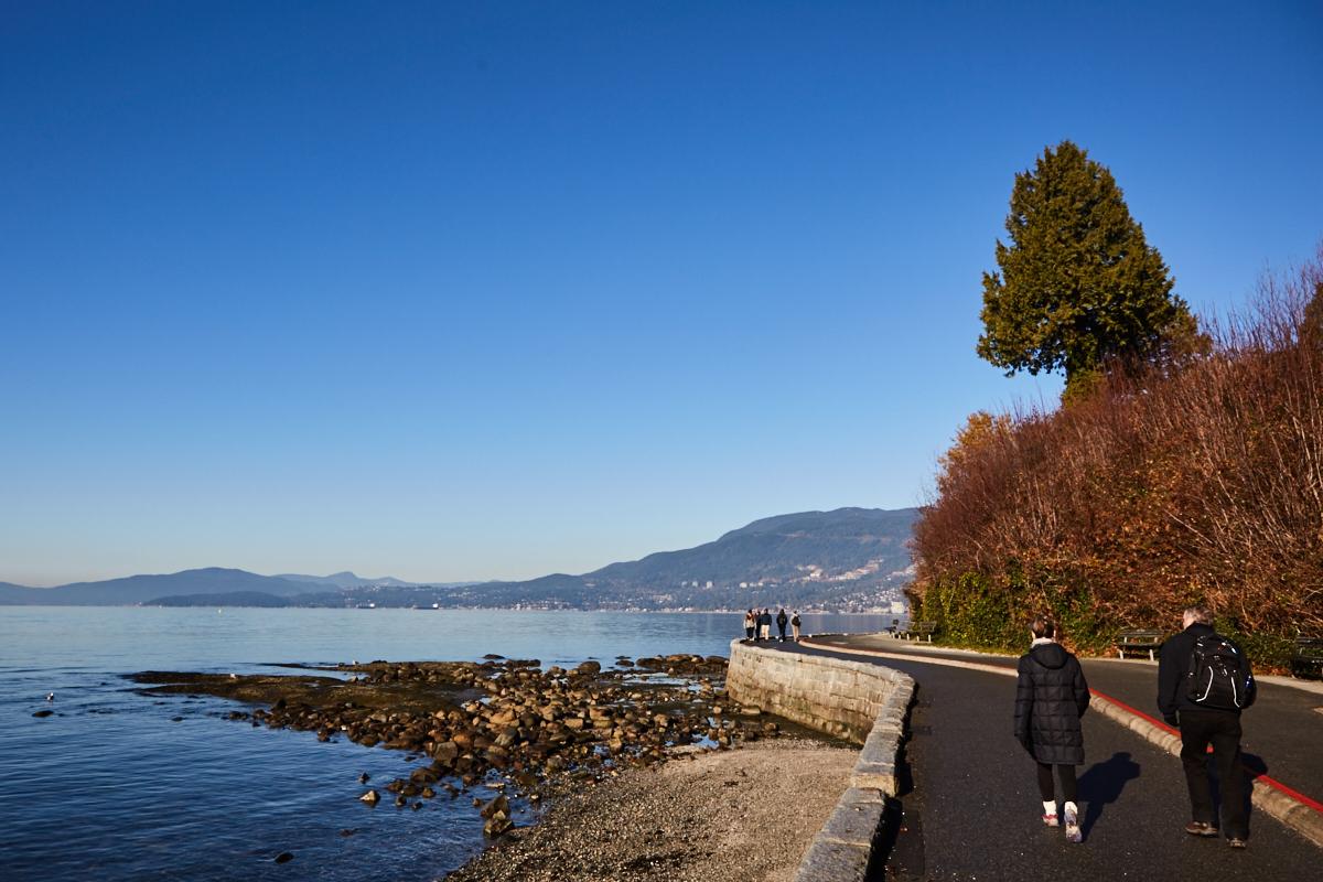 Stanley Park, Vancouver, début décembre 2015 (© Sébastien Lavallée)
